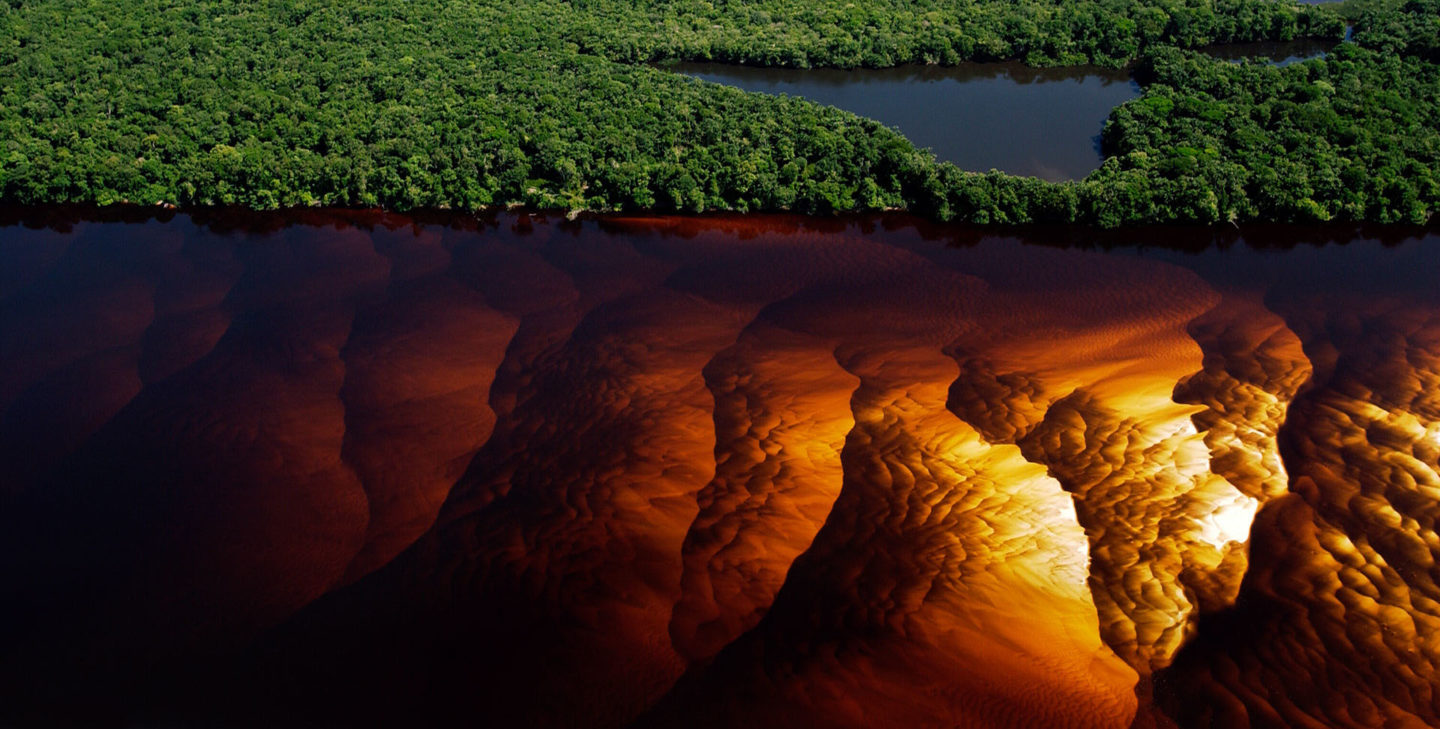 The heart of the earth with its blood flowing in its veins - The Rio Negro from the sky